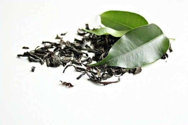 Grüner Tee für das Training